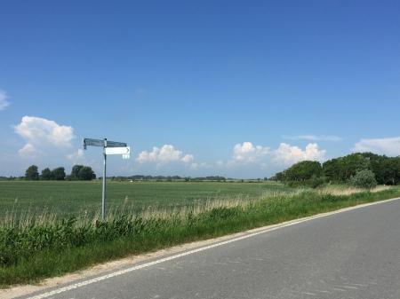 Meik160606-WegweiserEiderstedt